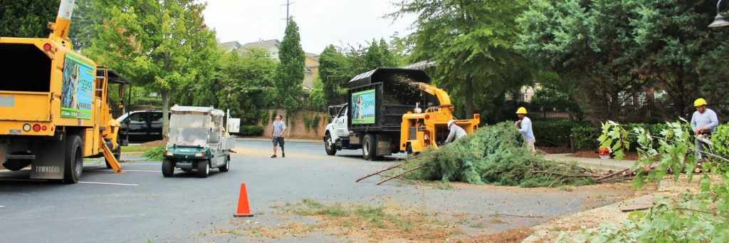 Commercial-Tree-Services-Shreveport Tree Trimming and Stump Grinding Services-We Offer Tree Trimming Services, Tree Removal, Tree Pruning, Tree Cutting, Residential and Commercial Tree Trimming Services, Storm Damage, Emergency Tree Removal, Land Clearing, Tree Companies, Tree Care Service, Stump Grinding, and we're the Best Tree Trimming Company Near You Guaranteed!