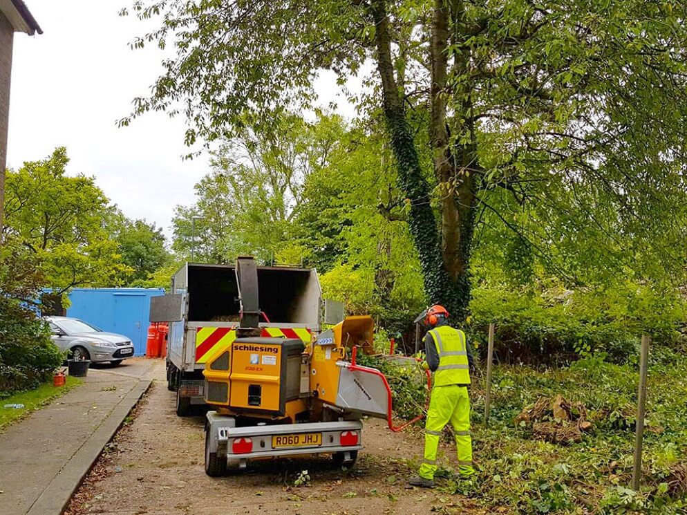 Contact Us-Shreveport Tree Trimming and Stump Grinding Services-We Offer Tree Trimming Services, Tree Removal, Tree Pruning, Tree Cutting, Residential and Commercial Tree Trimming Services, Storm Damage, Emergency Tree Removal, Land Clearing, Tree Companies, Tree Care Service, Stump Grinding, and we're the Best Tree Trimming Company Near You Guaranteed!