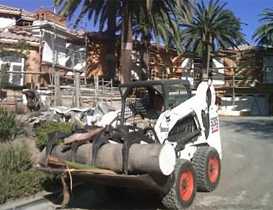 Palm-Tree-Removal-Shreveport Tree Trimming and Stump Grinding Services-We Offer Tree Trimming Services, Tree Removal, Tree Pruning, Tree Cutting, Residential and Commercial Tree Trimming Services, Storm Damage, Emergency Tree Removal, Land Clearing, Tree Companies, Tree Care Service, Stump Grinding, and we're the Best Tree Trimming Company Near You Guaranteed!