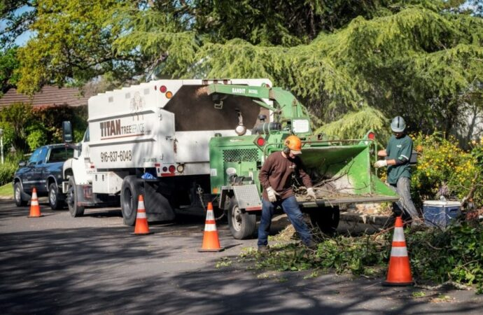 Residential-Tree-Services-Shreveport Tree Trimming and Stump Grinding Services-We Offer Tree Trimming Services, Tree Removal, Tree Pruning, Tree Cutting, Residential and Commercial Tree Trimming Services, Storm Damage, Emergency Tree Removal, Land Clearing, Tree Companies, Tree Care Service, Stump Grinding, and we're the Best Tree Trimming Company Near You Guaranteed!